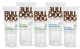 Bulldog1.jpeg